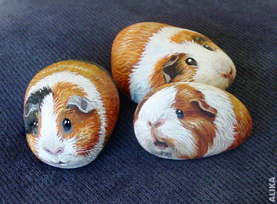 Hand painted rock ( stone)/ Guinea pigs